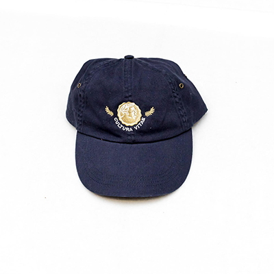 Chesterton Navy Baseball Hat